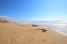 11-Spiaggia-vicina
